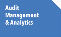 Audit Management & Analytics