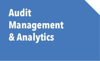 Audit Management & Analytics